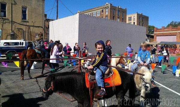 pony rides #HotPepperFestival