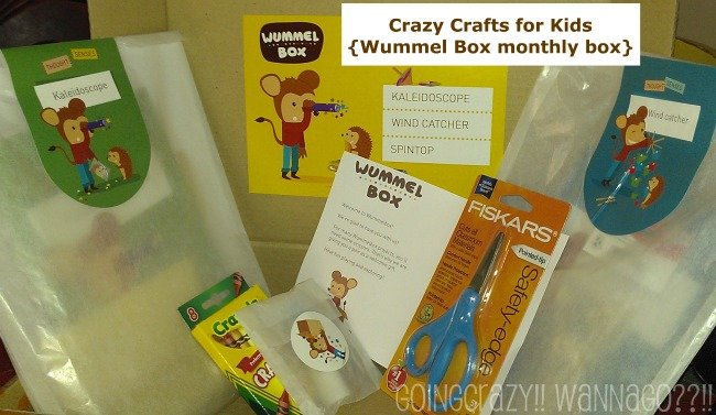 Wummel Box monthly box