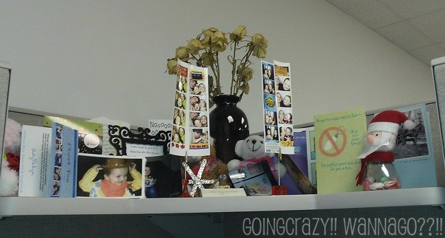cubicle decorating with cards and pictures