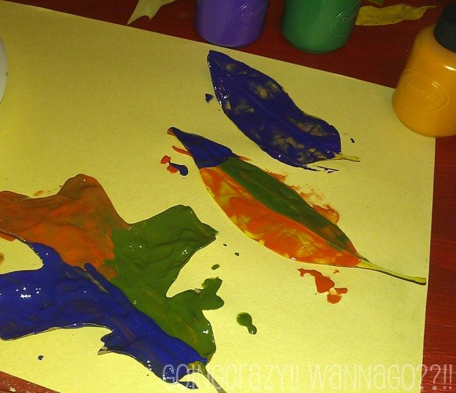paint leaves different colors