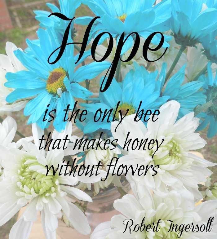 Hope is the only bee that makes honey without flowers - Pregnancy and TTC #HerHealth #shop #cbias