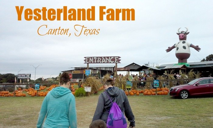 Entrance to Yesterland Farm in Canton, TX