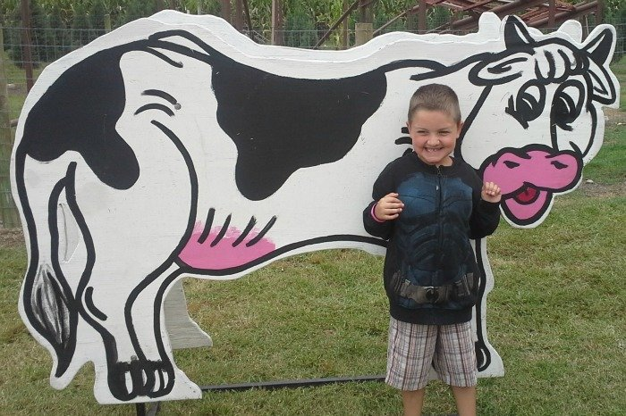 Take a photo with a cow at Yesterland Farm in Canton, TX