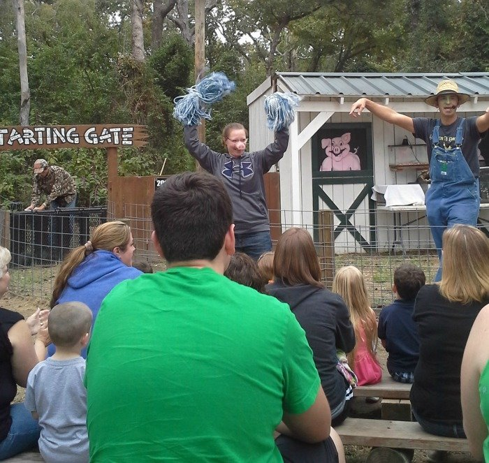 You might even get to be a cheerleader at the pig races at Yesterland Farm in Canton, TX