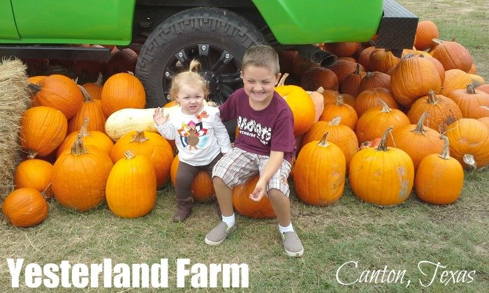 Take photos with lots of pumpkins at Yesterland Farm in Canton, TX