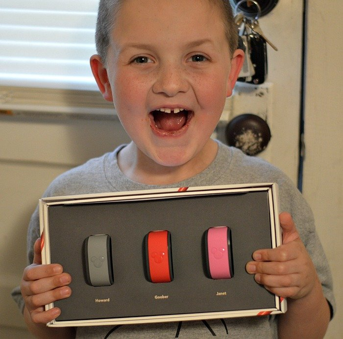 MagicBands for Disney World