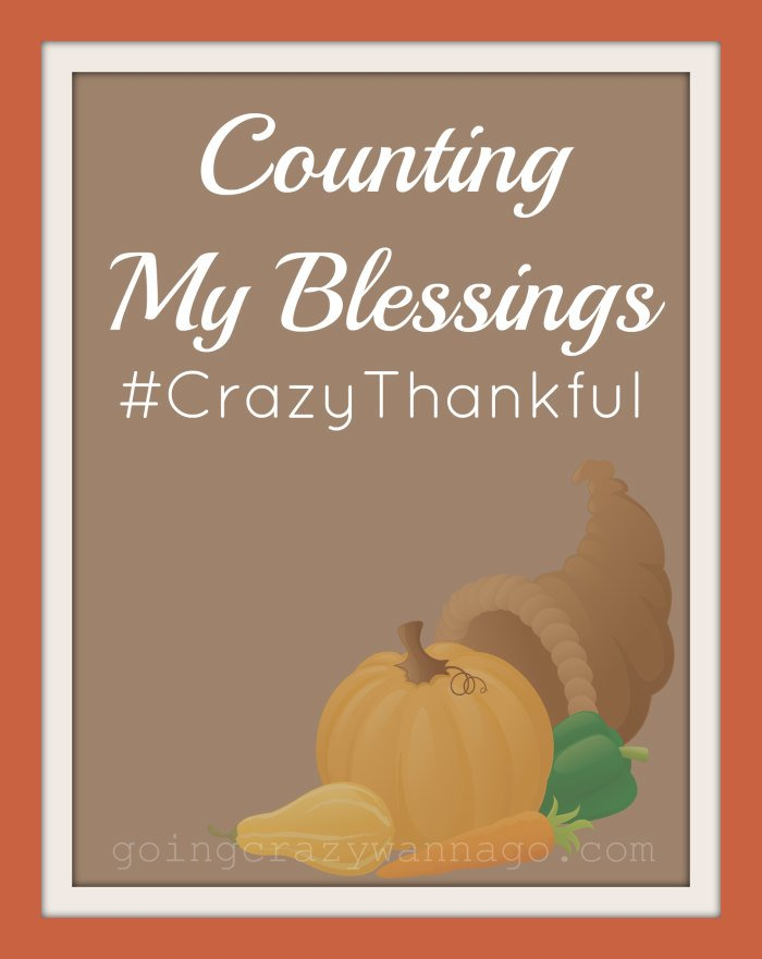 Counting My Blessings #CrazyThankful #Thankful30