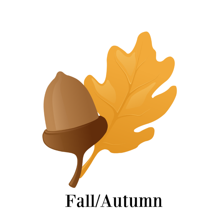 fall autumn
